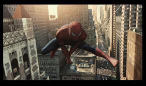 Spider2 (11k image)